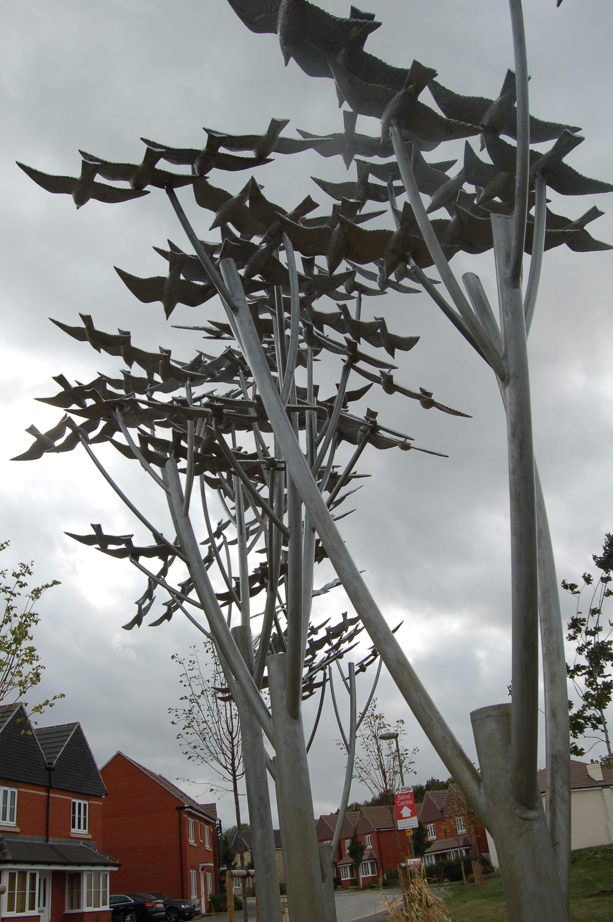 Murmuration of Starlings Oxford (16)