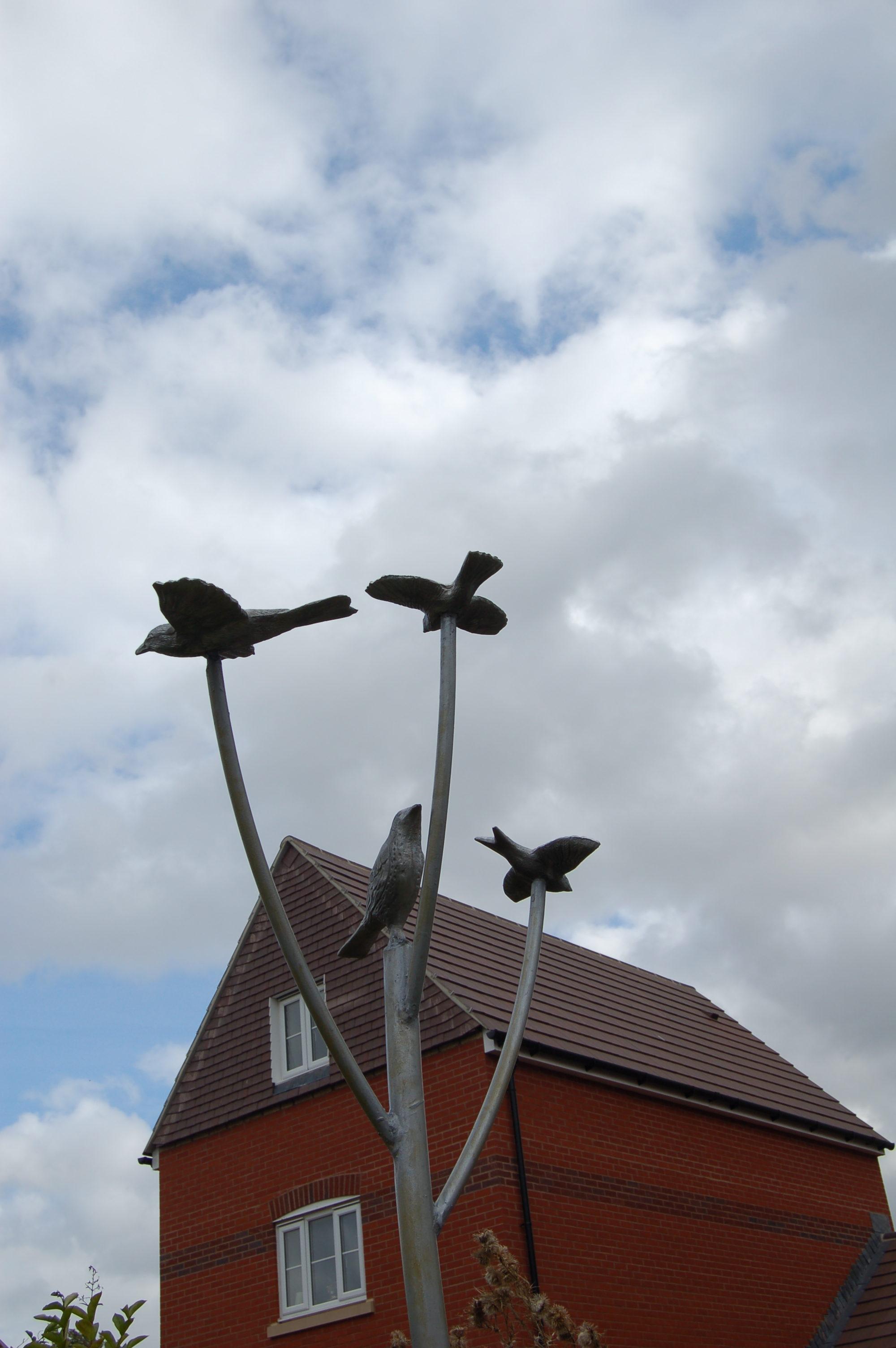 Murmuration of Starlings Oxford (3)