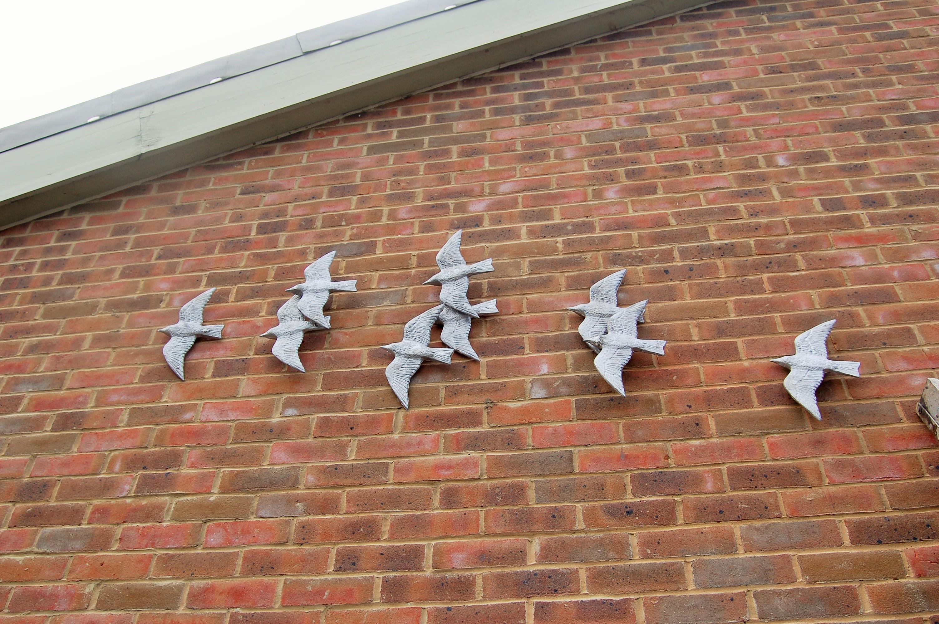 Murmuration of Starlings Oxford (9)